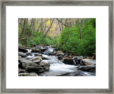 Tennessee, Great Smoky Mountains Framed Print