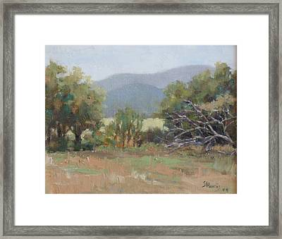Tennessee Morning Framed Print by Sandra Harris