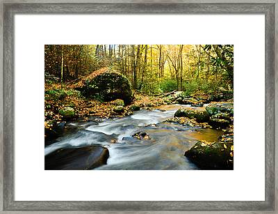 Tennessee Stream In Fall Framed Print