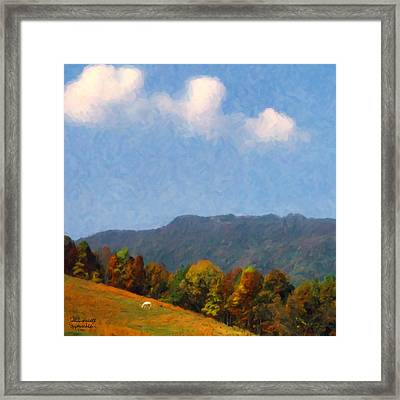 Tennessee Stud Framed Print by Spyder Webb