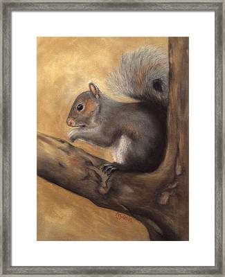 Tennessee Wildlife - Gray Squirrels Framed Print
