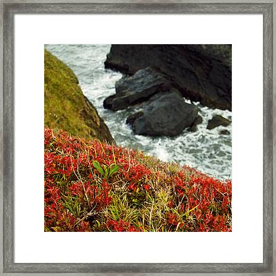 Tepona Point Framed Print