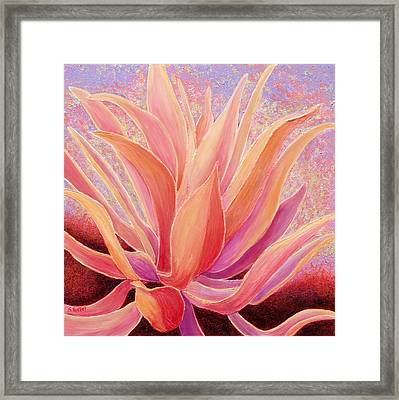 Tequila Sunrise Framed Print