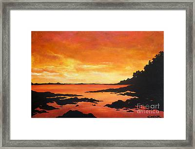 Tequila Sunset Framed Print by Chad Berglund