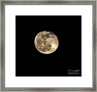 Teresa The Moon Framed Print by Kip Krause