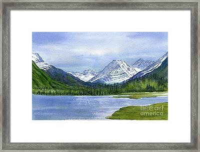 Tern Lake Framed Print by Sharon Freeman