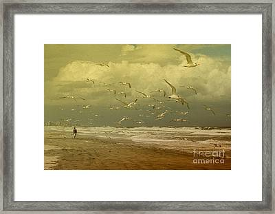 Terns In The Clouds Framed Print