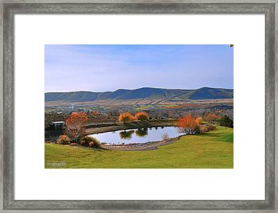 Terra Blanca Vintners Framed Print by Sarai Rachel