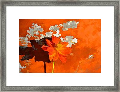 Terra Cotta Shadows Framed Print