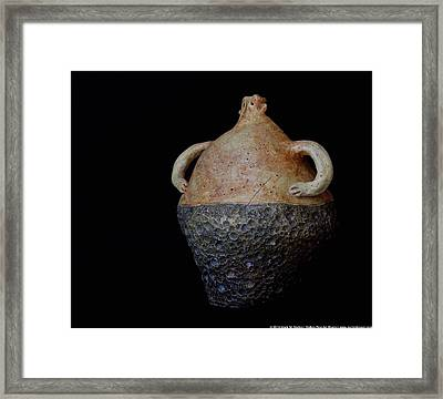 Terra Ignacio Framed Print by Mark M  Mellon