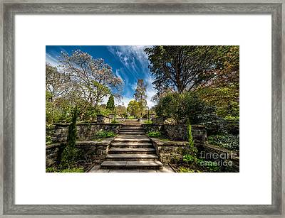 Terrace Garden Framed Print by Adrian Evans