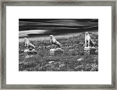 Terrace Of The Lions Framed Print by John Rizzuto