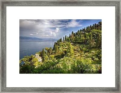 Terraced Hillside Of Portofino Framed Print by George Oze