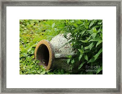 Terracotta Vase In The Green Framed Print by Amanda Mohler