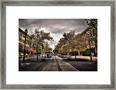 Terrell Mall On The Wsu Campus Framed Print by David Patterson