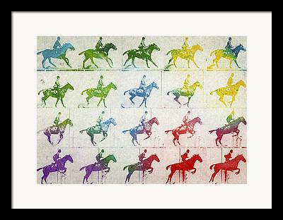 Horse Drawing Digital Art Framed Prints