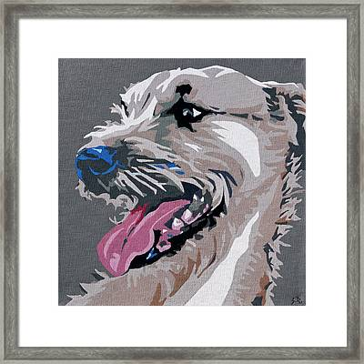 Terrier Mix 2 Framed Print by Slade Roberts