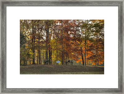 Terrils Battery H Framed Print