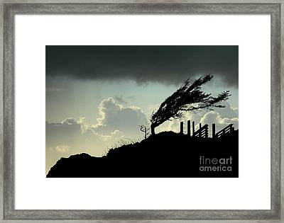The Test Of Time Framed Print