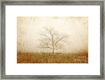 Test Of Time Framed Print by Scott Pellegrin