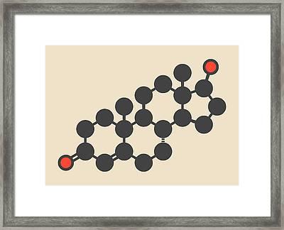 Testosterone Male Sex Hormone Molecule Framed Print