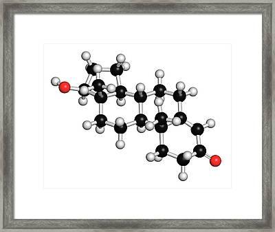 Testosterone Molecule Framed Print