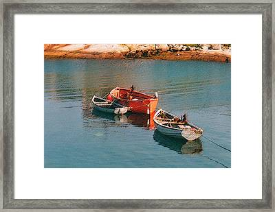 Tethered Rowboats Framed Print by Susan Crossman Buscho