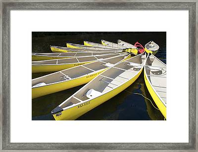 Tethered Yellow Canoes At Lost Lake In Whistler British Columbia Framed Print by Randall Nyhof