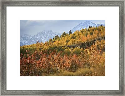 Teton Fall Framed Print