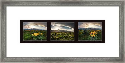 Teton Spring Triptych Framed Print by Leland D Howard