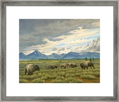Tetons-buffalo  Framed Print by Paul Krapf