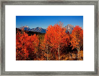 Framed Print featuring the photograph Tetons Colors Of Autumn by Aaron Whittemore