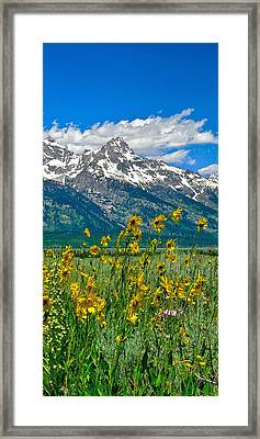 Tetons Peaks And Flowers Right Panel Framed Print