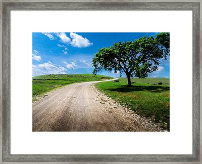 Texaco Hill Framed Print