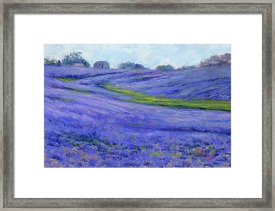 Texas Blue Framed Print
