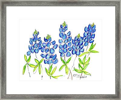 Texas Bluebonnets Watercolor Painting By Kmcelwaine Framed Print