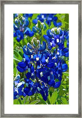 Texas Bluebonnets - Posterized Image Framed Print