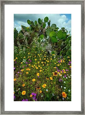 Texas Bouquet II Framed Print