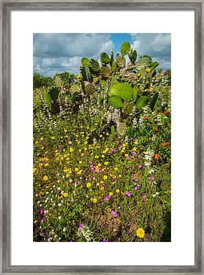 Texas Bouquet Framed Print