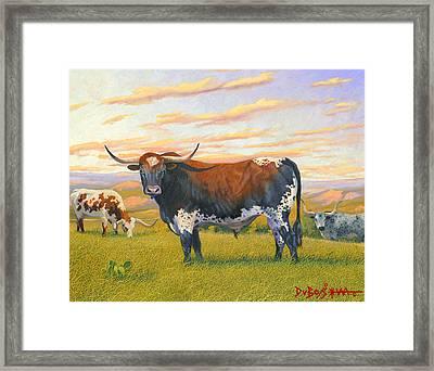 Texas Bred Framed Print