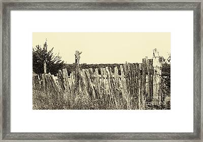 Texas Fence In Sepia Framed Print