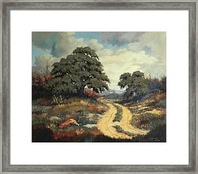 Texas Hill Country Framed Print by Bob Hallmark