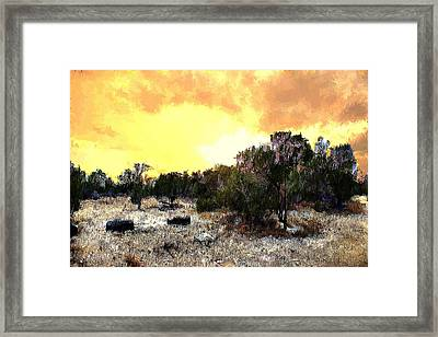 Texas Hill Country Framed Print