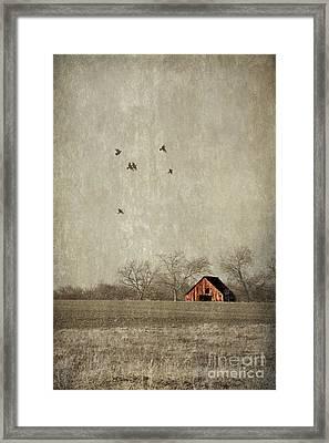 Texas Landscape Framed Print