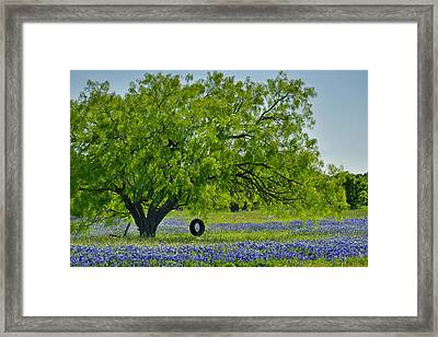 Framed Print featuring the photograph Texas Life - Bluebonnet Wildflowers Landscape Tire Swing by Jon Holiday