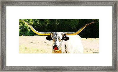 Texas Longhorn - Bull Cow Framed Print by Sharon Cummings
