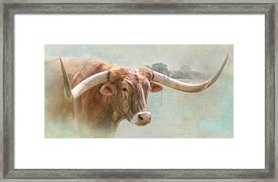 Portrait Of A Texas Longhorn Framed Print by David and Carol Kelly