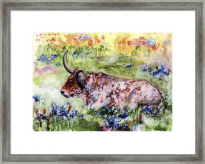 Texas Longhorn In Blue Bonnets Framed Print