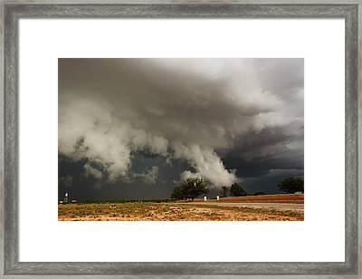 Texas Monster Framed Print