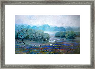 Texas Pastoral Framed Print by Dan Terry